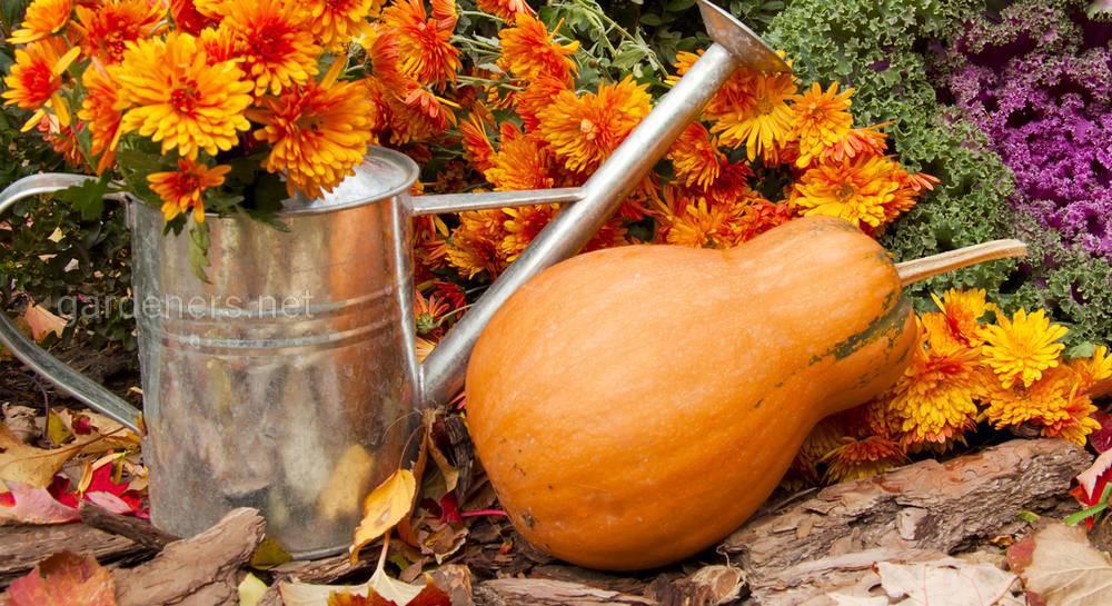 садовые работы в октябре.jpg