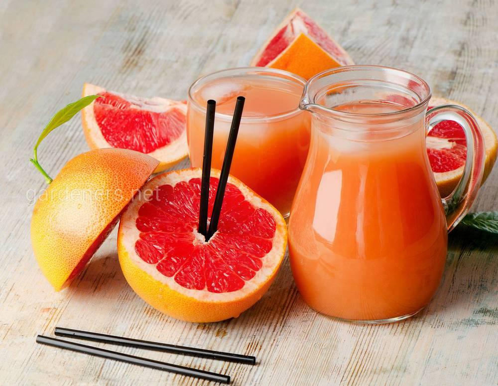 Грейпфрутовый коктейль