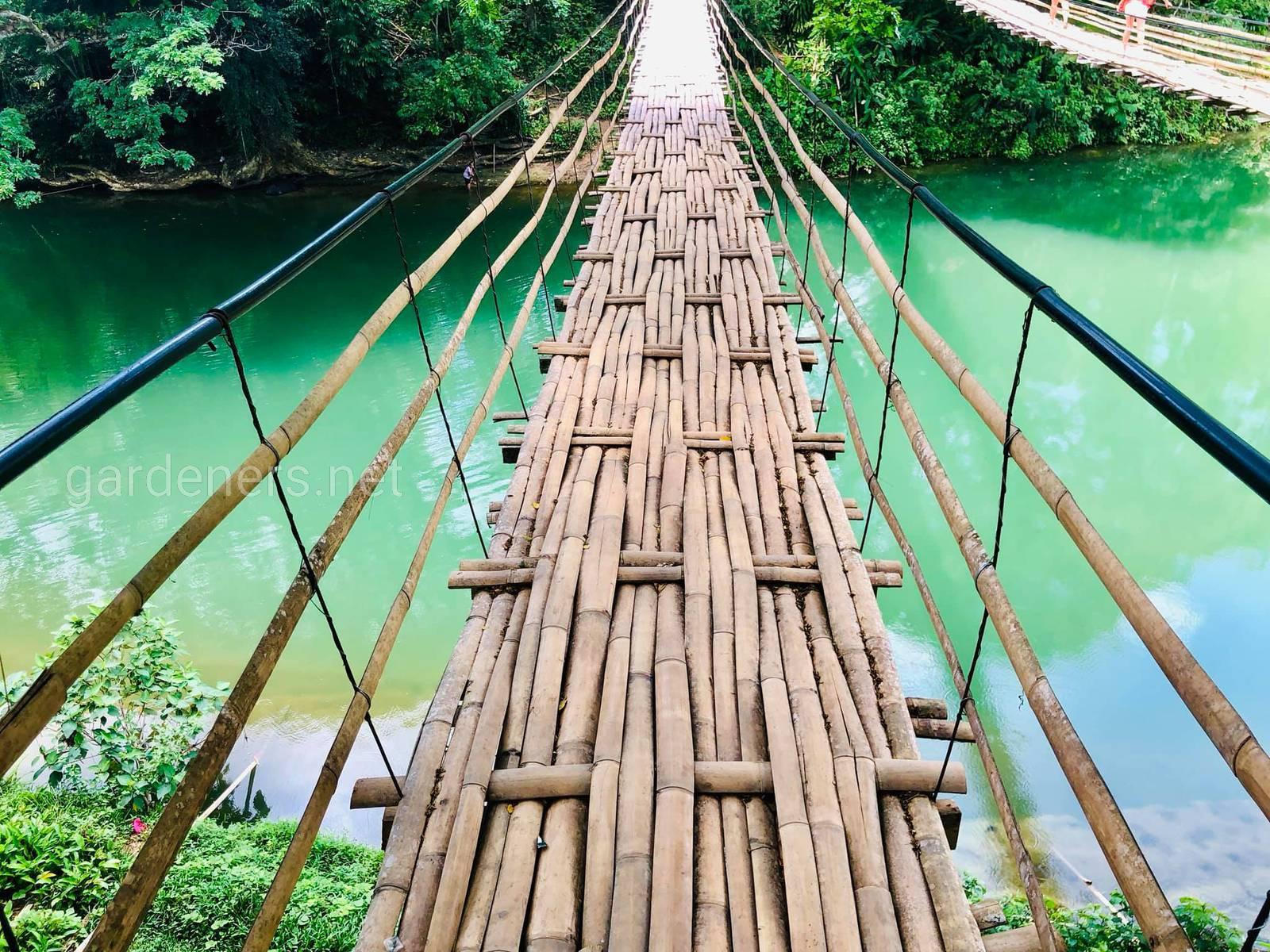 Природа на Филиппинах. подвесной бамбуковый мост