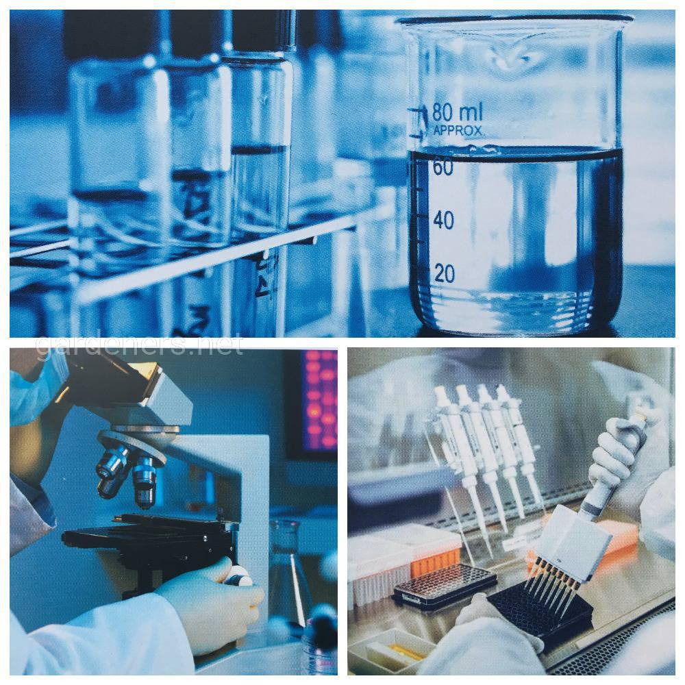 Лабораторія фітопатології та молекулярно- генетичного аналізу)