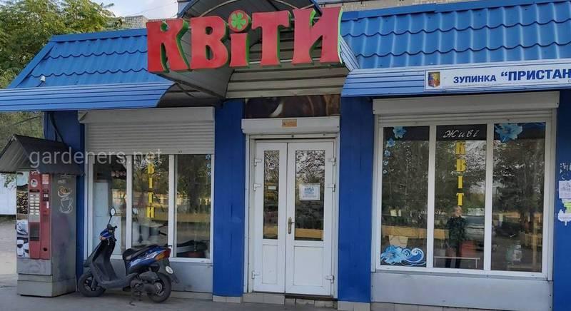 Цветочный магазин в Голой Пристани