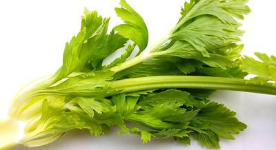 vegetables-2085017_1920.jpg