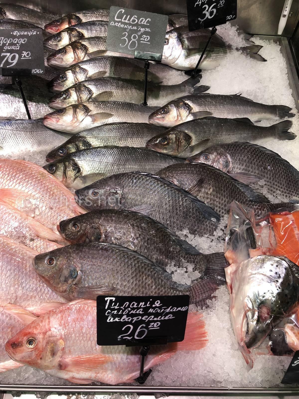 Тилапия — род пресноводных рыб