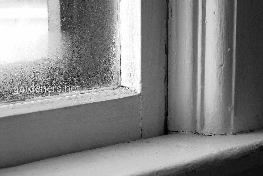 Щели в окнах