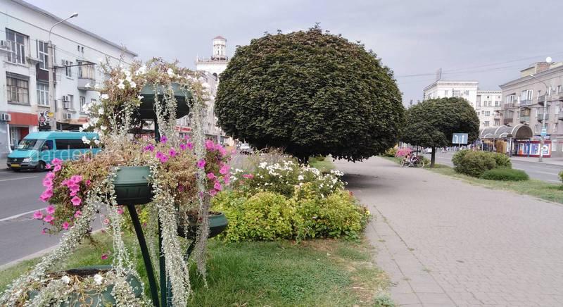 Воскресенье, цветочный бульвар