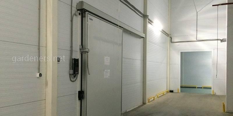 Вибір дверей для холодильних складів