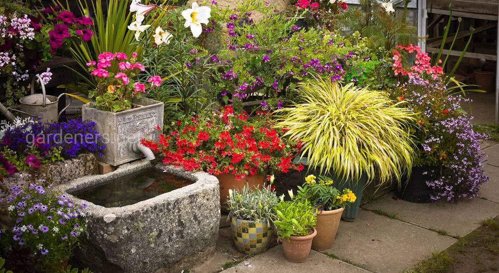 Подбираем удобное место в саду