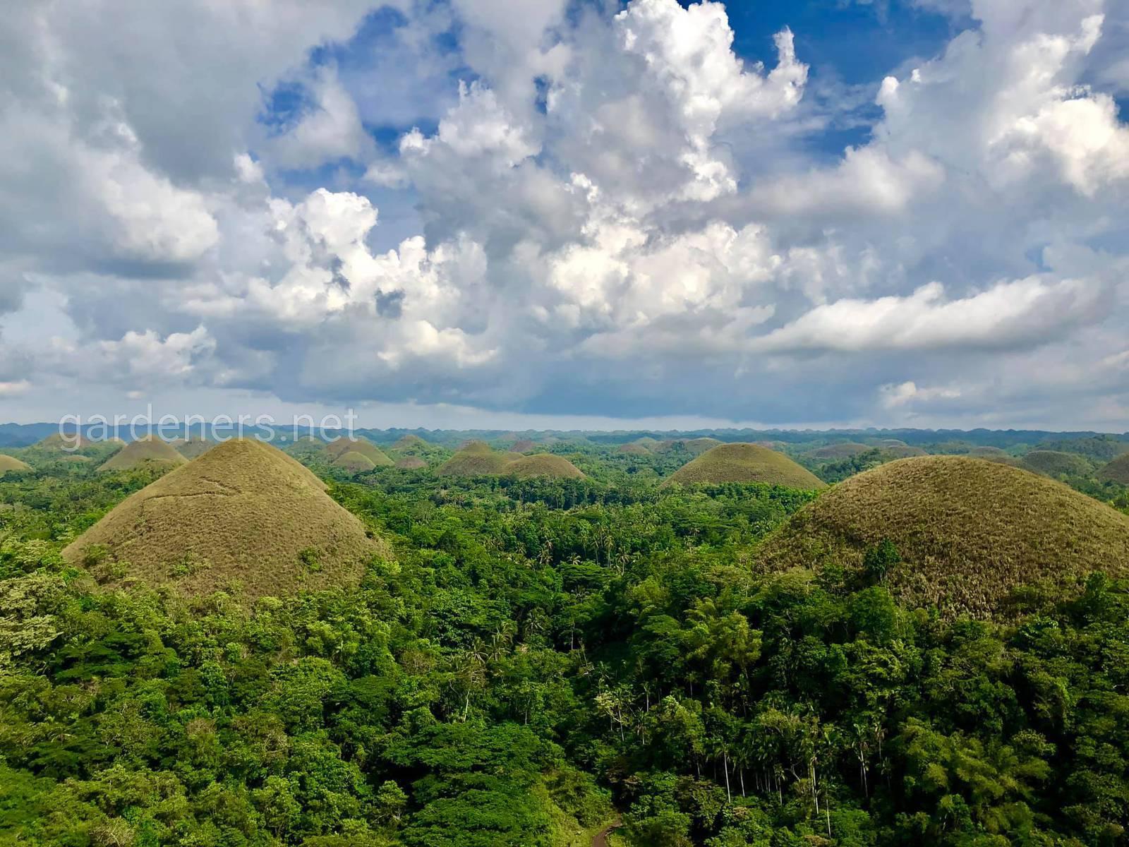 Шоколадные холмы. Остров Бохол, Филиппины