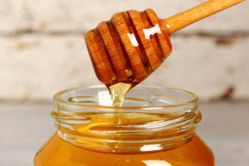 Вересковый мёд