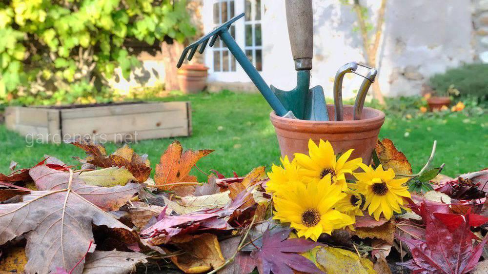 Прибирання саду в осінній період