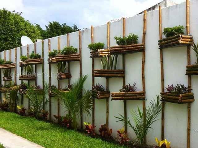 Вертикальний сад