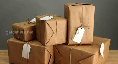 Как безопасно покупать саженцы по почте?