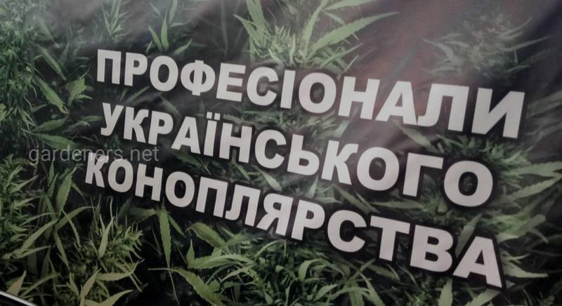 Профессионалы украинского коноплеводства