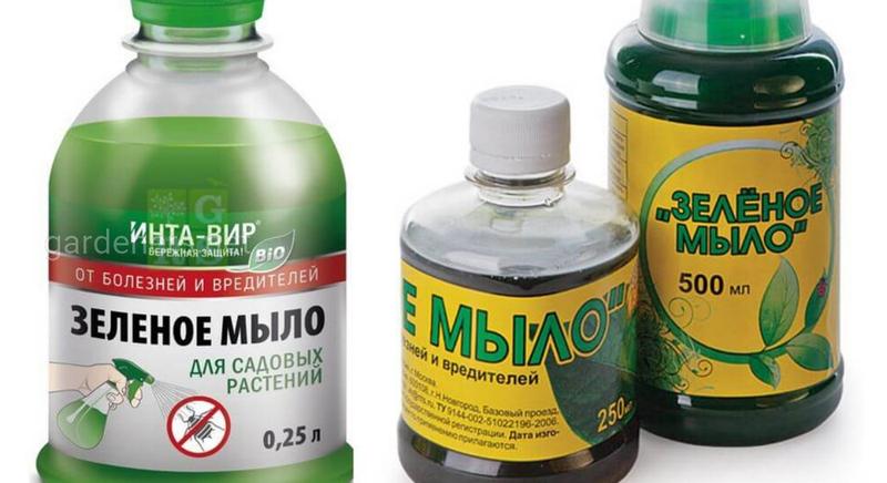 Зеленое мыло от вредителей и болезней