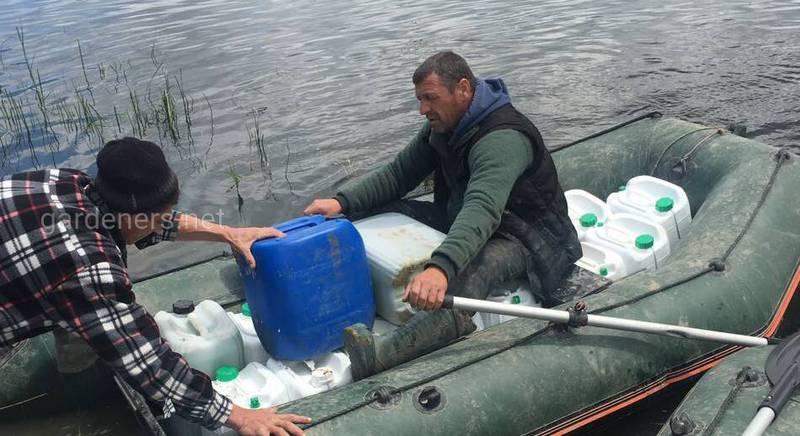 Хлорелла в прудовом рыбоводстве