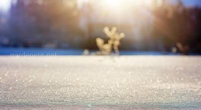 Основные зимнее приметы для урожая и погодных условий
