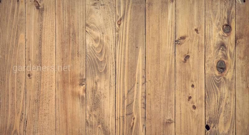 Як захистити дерев'яну підлогу від гниття і шкідників