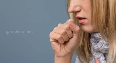 ТОП-5 ошибок, которые мы допускаем при лечении кашля. Жизненно важно!