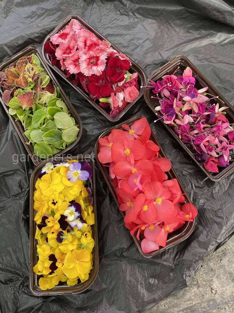 Упаковка съедобных цветов