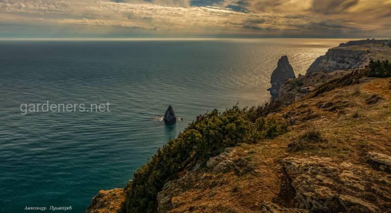 Фиолент и море