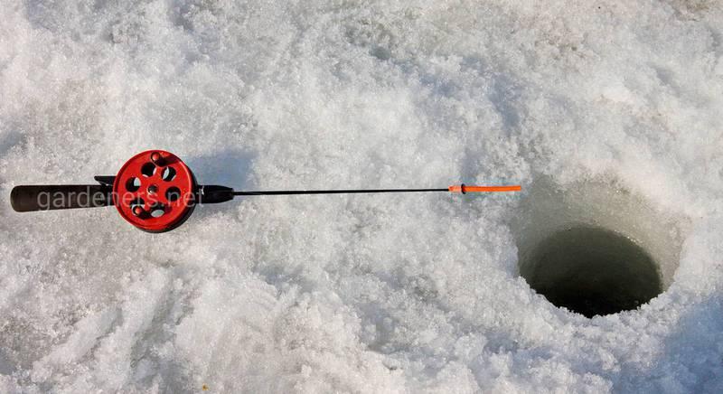Детерминанты успешной зимней рыбалки