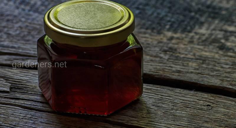 Мед з різнотрав'я: які бувають види і в чому їх користь
