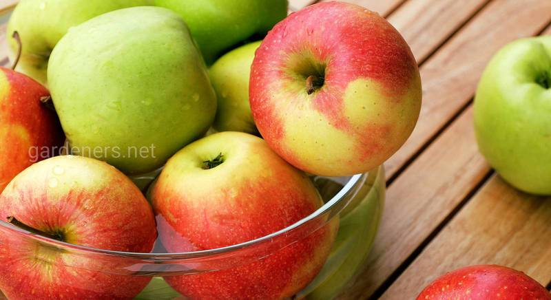 Що приготувати з яблук