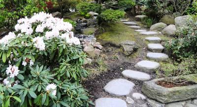садовая дорожка.JPG