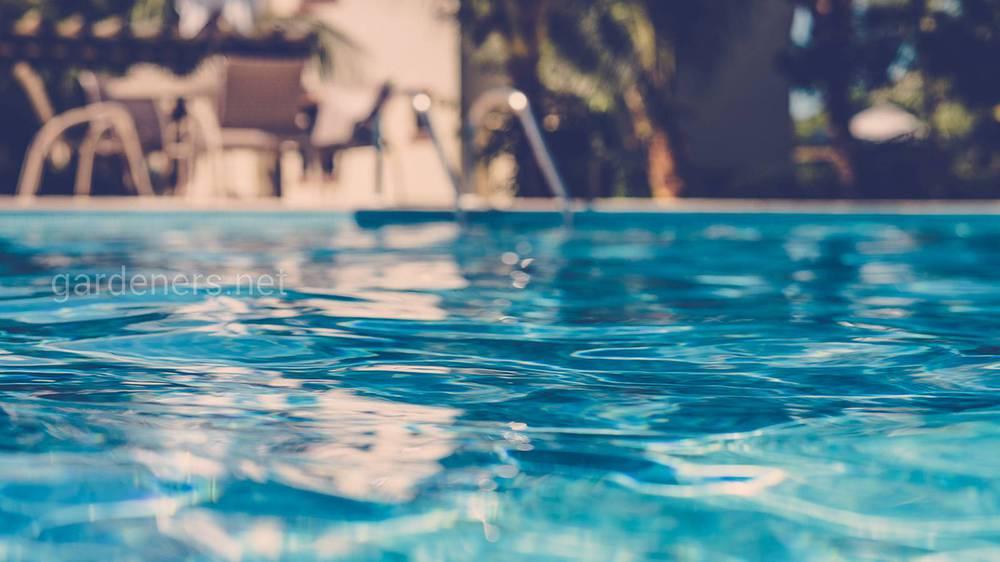 Цветение воды в водоемах и бассейнах