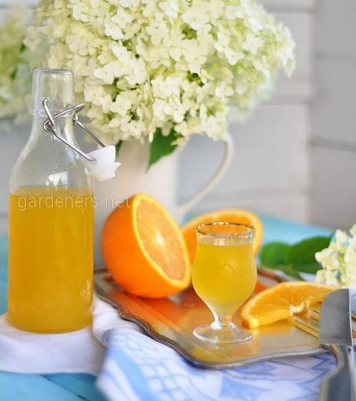 Види апельсинових лікерів