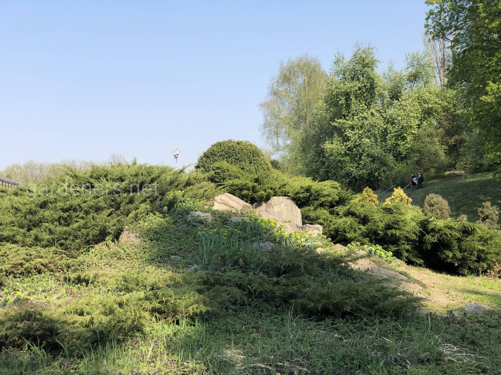 Ботанический сад им Гришка