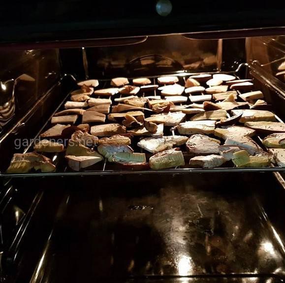 Приготування сушених грибів про запас