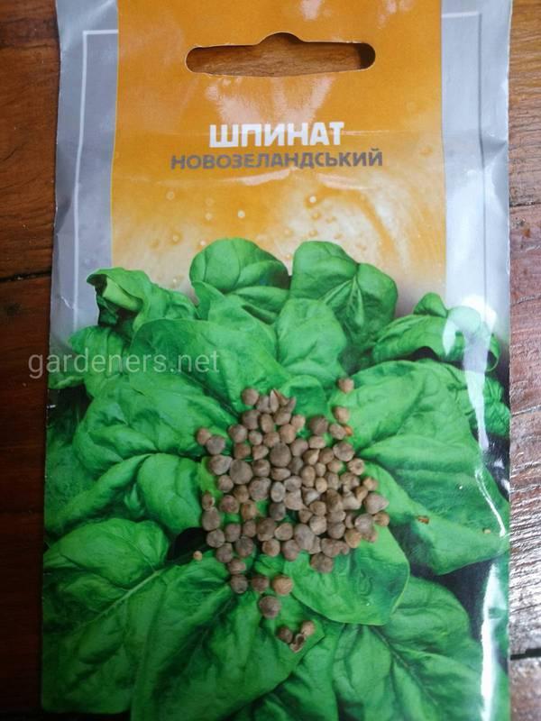 Як підготувати насіння шпинату для посадки