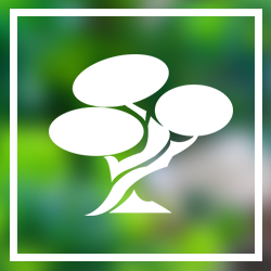 Клуб тропических растений и бонсай