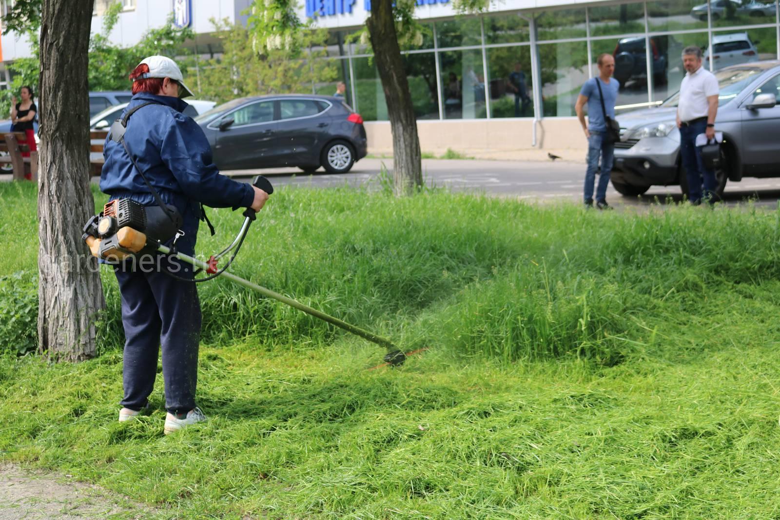 Косим траву