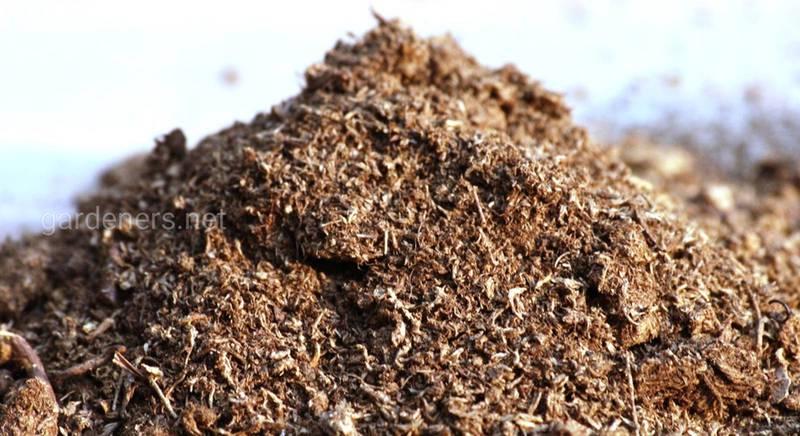 Особенности внесения органических удобрений – навоза и помета, чтобы улучшить, а не навредить почве