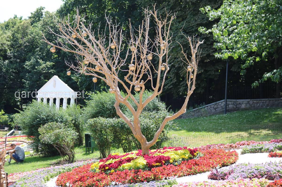 Миф про «Золотое дерево»
