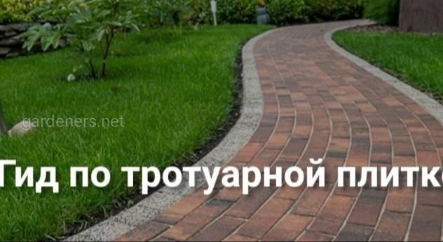 Как выбрать бетонную тротуарную плитку?