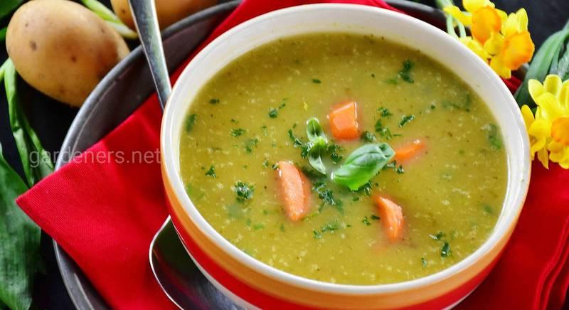 Кращі рецепти супів
