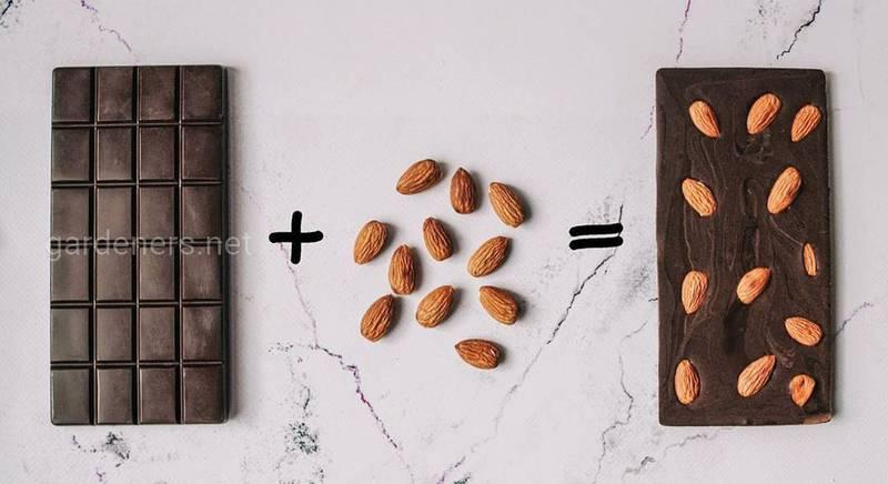 Шоколадная арифметика