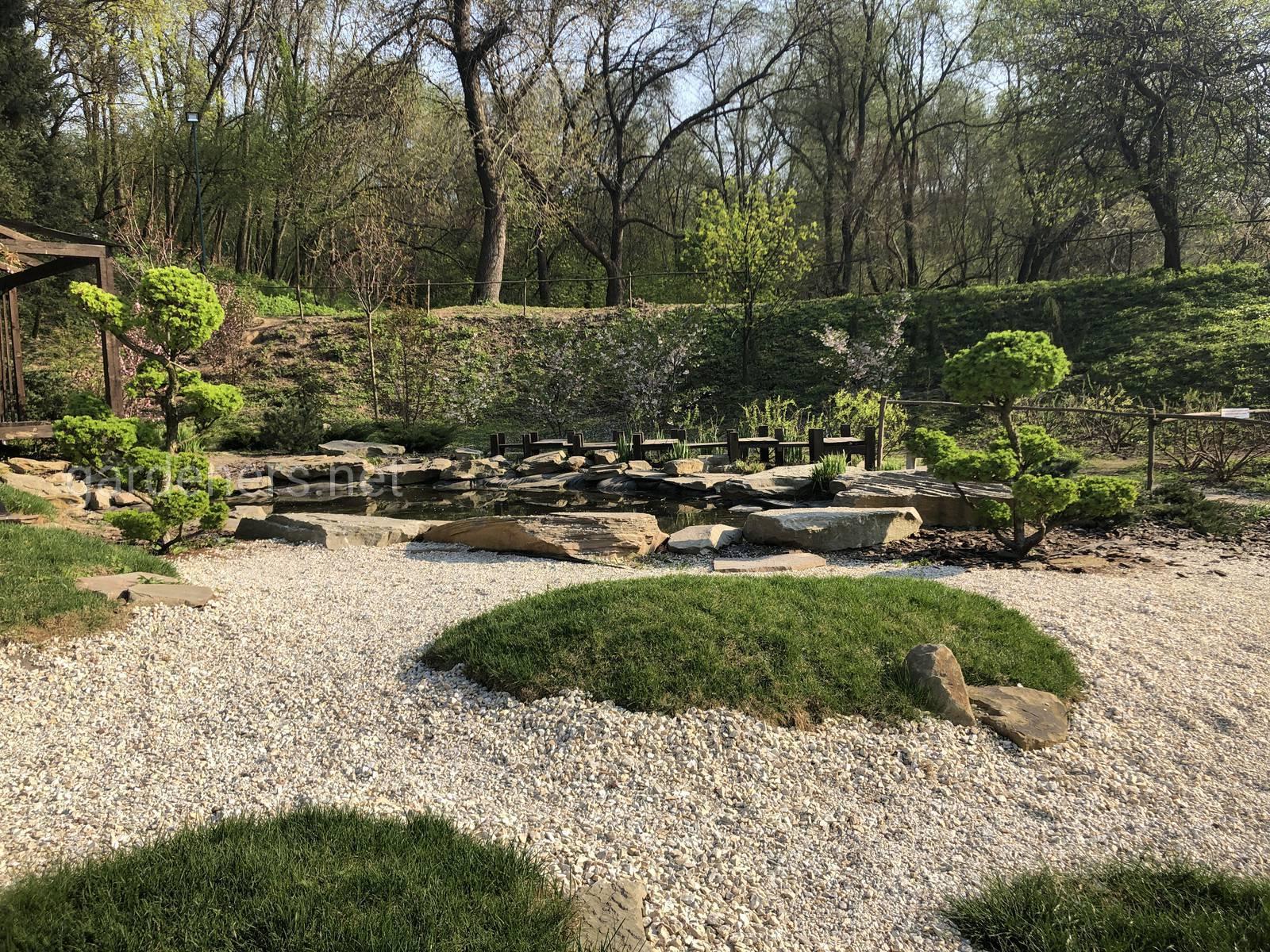 Японский ландшафт. Ботанический сад им Гришка
