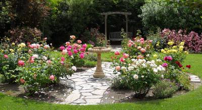английский сад.jpg
