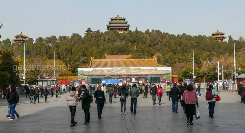 Три павильона на исторической горе Цзиншань (в центре Павильон Вечной Весны)
