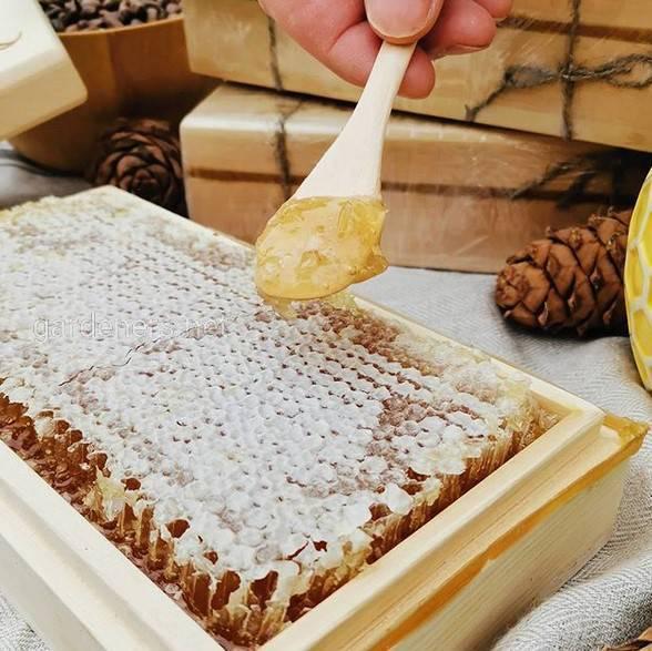 Бортевой мед