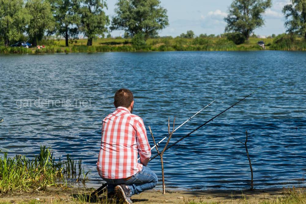 Яку погоду краще вибрати для риболовлі