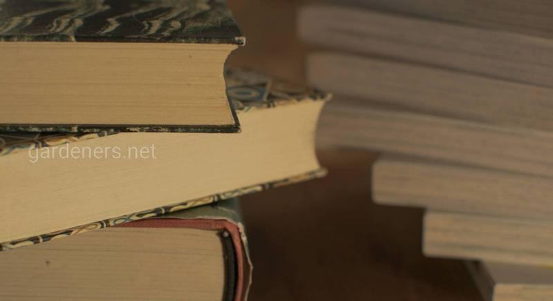 Семерка лучших вариантов использования старых книг с пользой