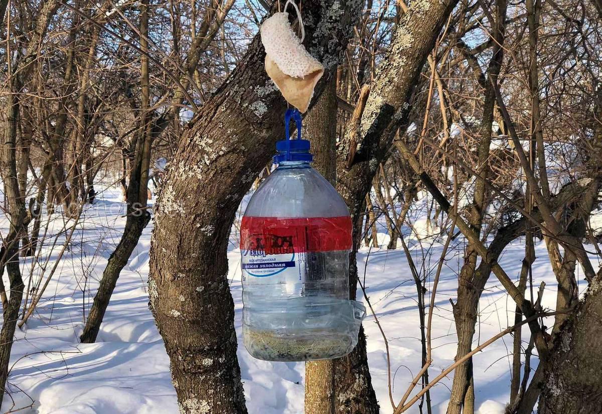 Кормушка из большой пластиковой бутылки