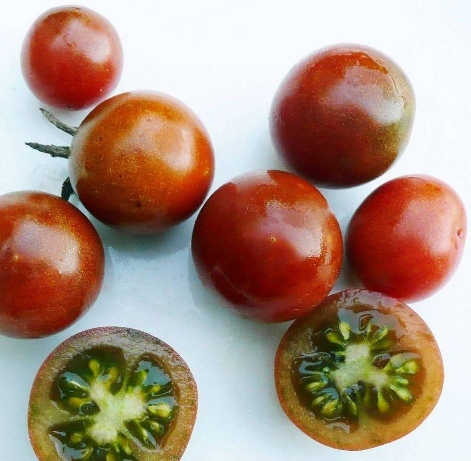 Сорт помидоров черри Пляжный черри