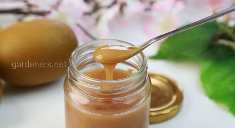 Корисні властивості меду манука і протипоказання до його вживання