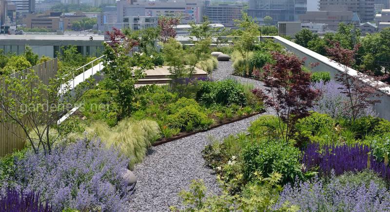 """Крыша в стиле """"эко"""": выбираем растения для высотного сада"""